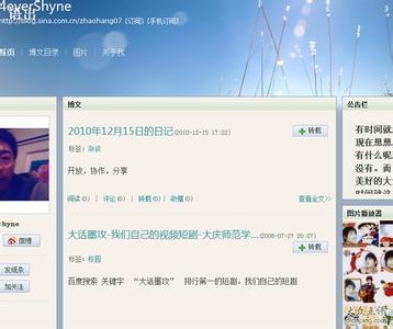 Sina blog
