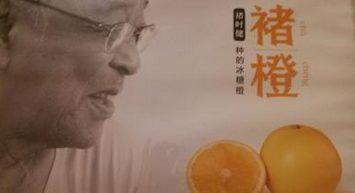 A successful Chinese Marketing story : Chu shijian's