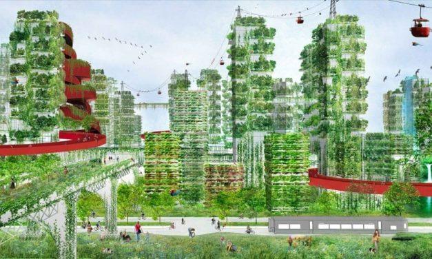 "China: a ""new"" Green Economy"